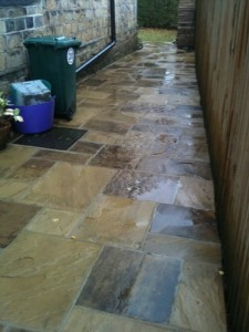 Stone Flagstones after cleaning