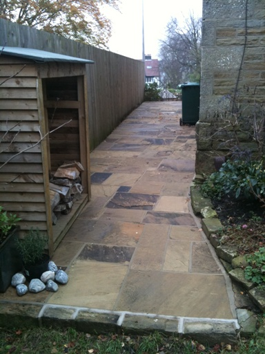 Path down side of house after cleaning