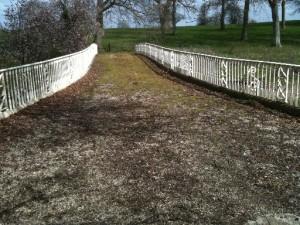 Repainted Railings Over Bridge